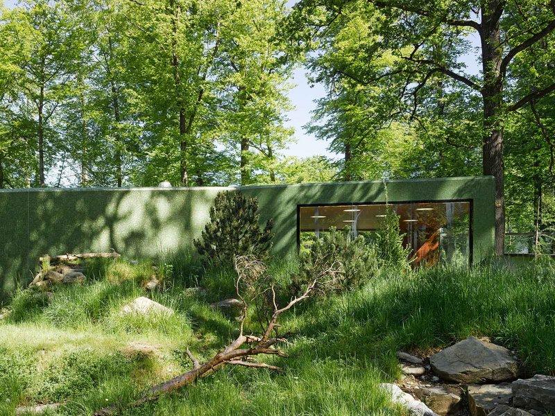 Morscher Architekten: Tierbeobachtungspavillon Zoo Bern - best architects 15