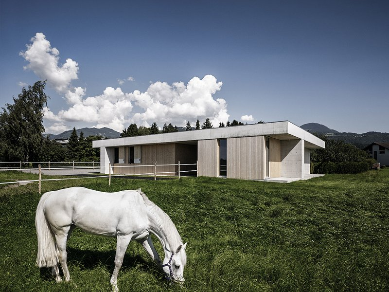 Marte.Marte Architekten : Griss Equine Veterinary Practice - best architects 16